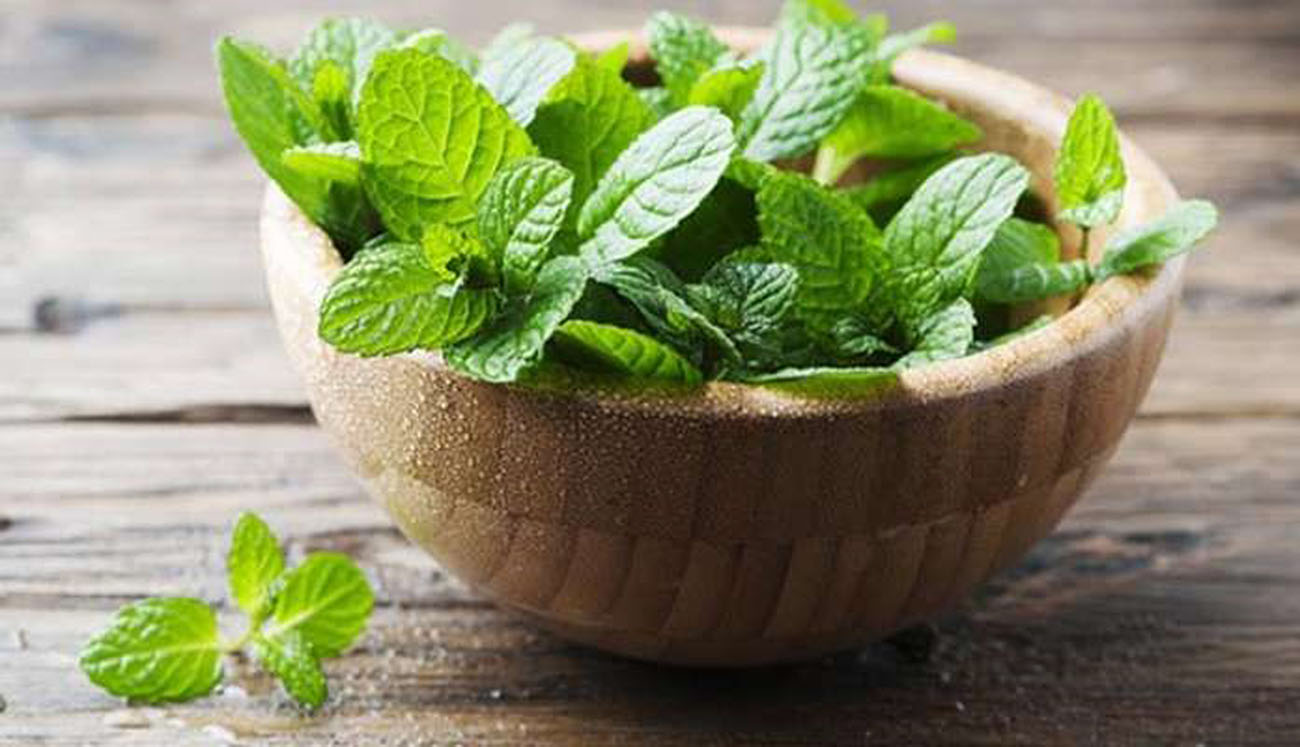 Image 5 Amazing Benefits Of Mint Leaves For Skin