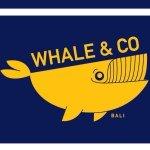 whale co coffee